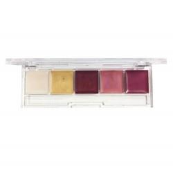 Palette 5 gloss Pro