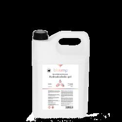Gel hydro-alcoolique 500ml
