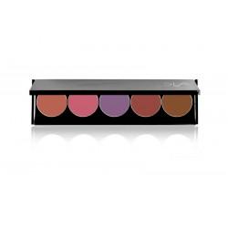 Palette 5 rouges à lèvres Color Extreme Luxe